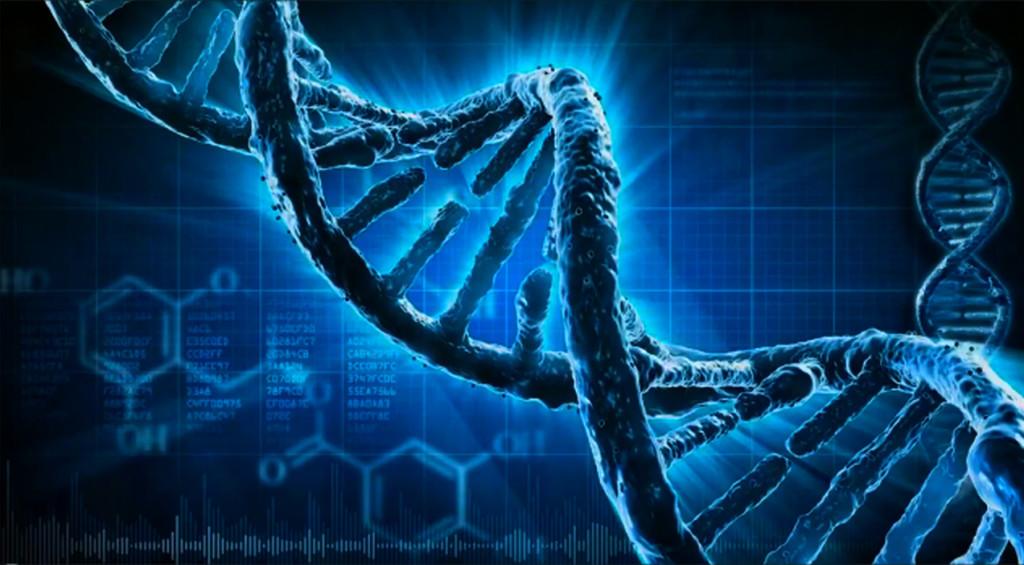 Вспоминая свою ДНК